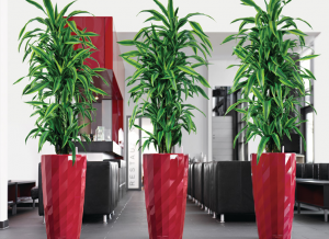 Superb Indoor Plant Pots And Planters. Lechuza Diamante Planter
