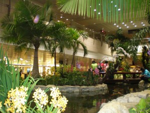 New indoor folding garden in china center newpro blog for Indoor gardening singapore