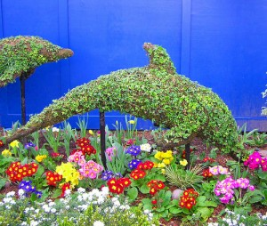 The Indoor Topiary Newpro Blog