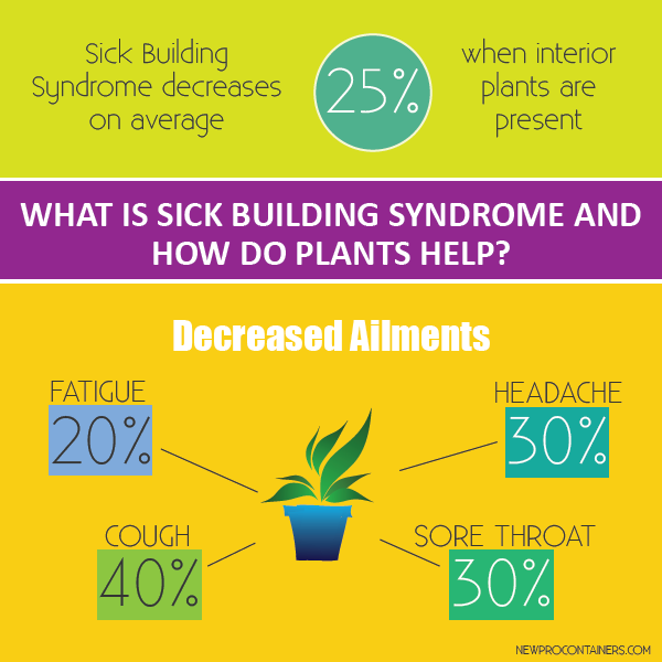 Opinion suck building syndrome consider