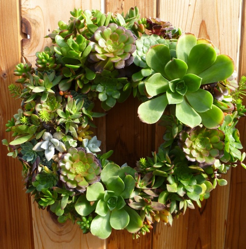 How To Make A Living Wreath Newpro Blog