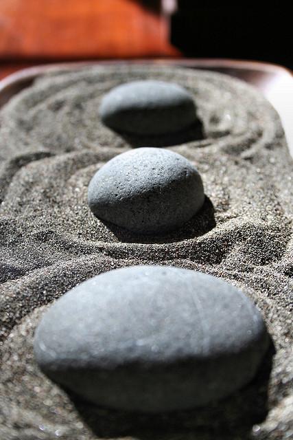 How to Create an Indoor Zen Garden NewPro Blog