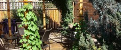 how to landscape with a pergola - featured image