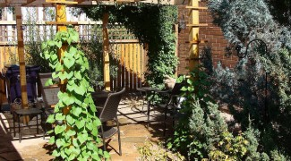 How to Landscape with a Pergola Featured Image