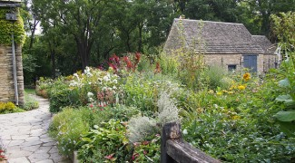 Growing a Cottage Garden in Containers Featured Image