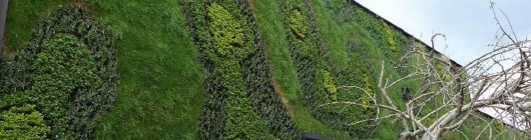 Green Wall Design