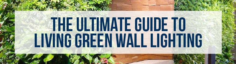 The Ultimate Living Green Wall Lighting Guide