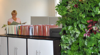 Living Green Wall Ideas for Small-Scale Applications Featured Image