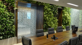 2 Tips for Successfully Planning a Green Wall Project Featured Image