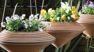 Seven Unique Outdoor Containers Featured Image