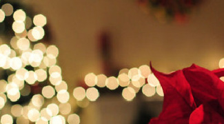 5 Benefits of Using LED Lights in Christmas Displays Featured Image