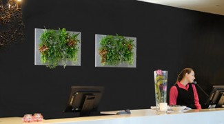 An Introduction to Green Wall Lighting Featured Image