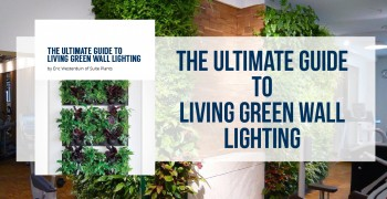 Ultimate Living Green Wall Lighting Guide