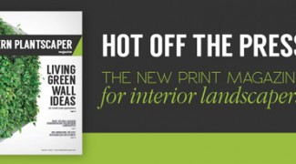 Why We Launched a New Print Magazine for Interior Landscapers Featured Image