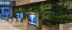 Modulo Green Wall
