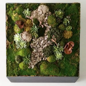 moss wall installation
