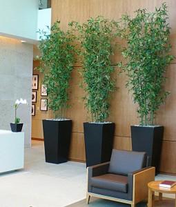 Bamboo Lobby