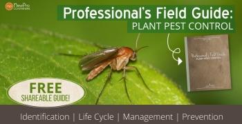 PestGuideGraphic