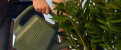 Plant Technician