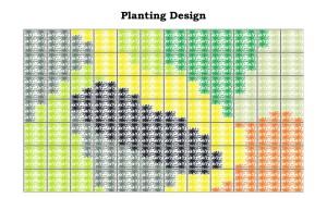 Planting Design Example