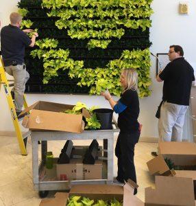 Green wall install