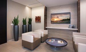Sanseveria in lobby