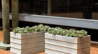 How to Choose an Outdoor Container Featured Image