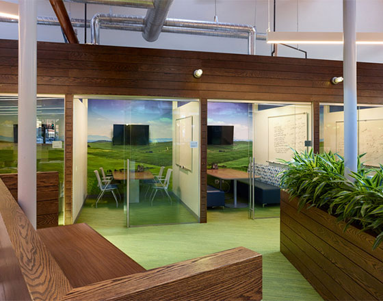 image of offices with green carpet and natural wooden textures