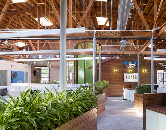 office hallway with natural wood textures and plants in wooden planters