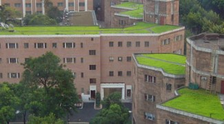 Green Roofs: The New-Old Hanging Gardens of Babylon Featured Image