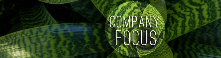company's focus