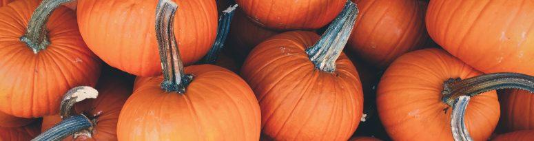 horror story pumpkins