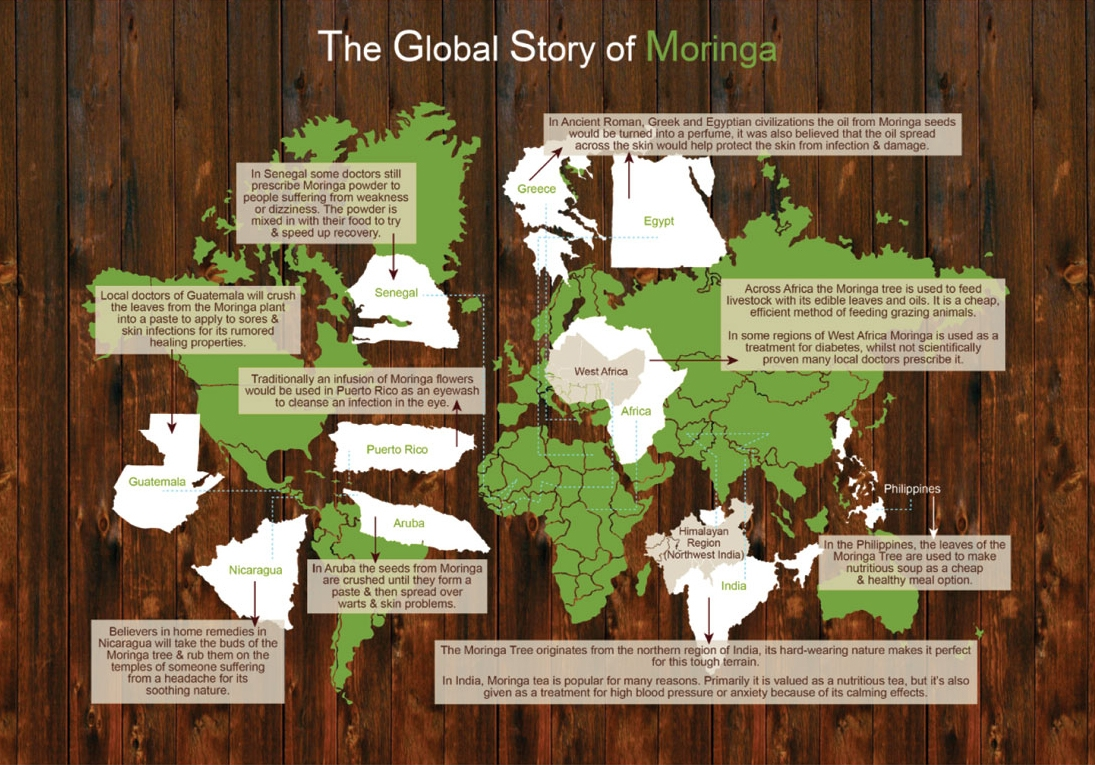 Moringa Global Map