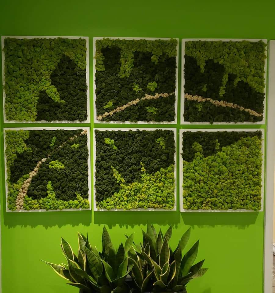 a series of 6 moss wall art panels that when assembled form the image of a leaf.