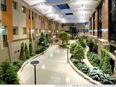 plants healthcare