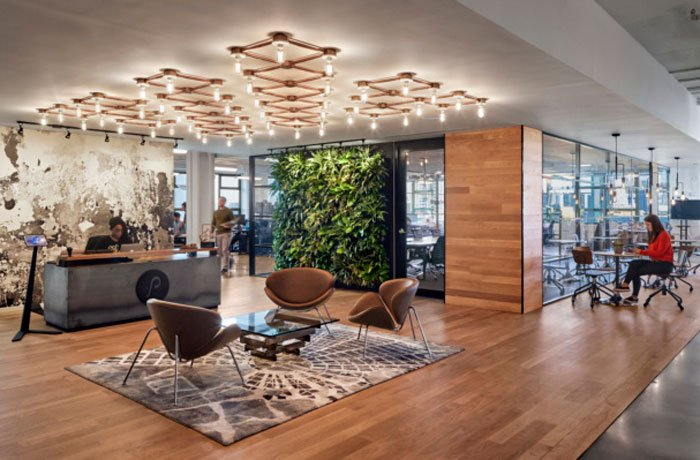 prophilic interactive offices showcasing biophilic design in the workplace with a green wall and natural wood textures
