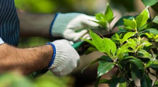 Tips for Techs: 7 Ways to Make Plant Maintenance More Efficient Featured Image