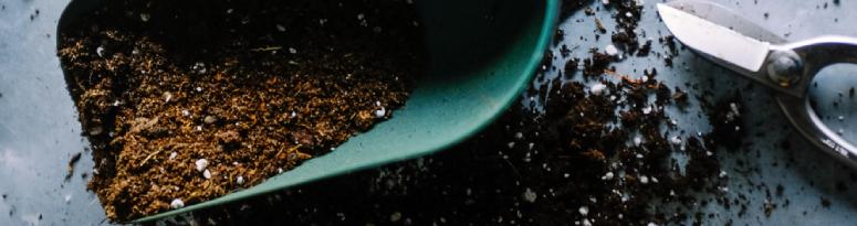 shovel with potting soil and plant scissors