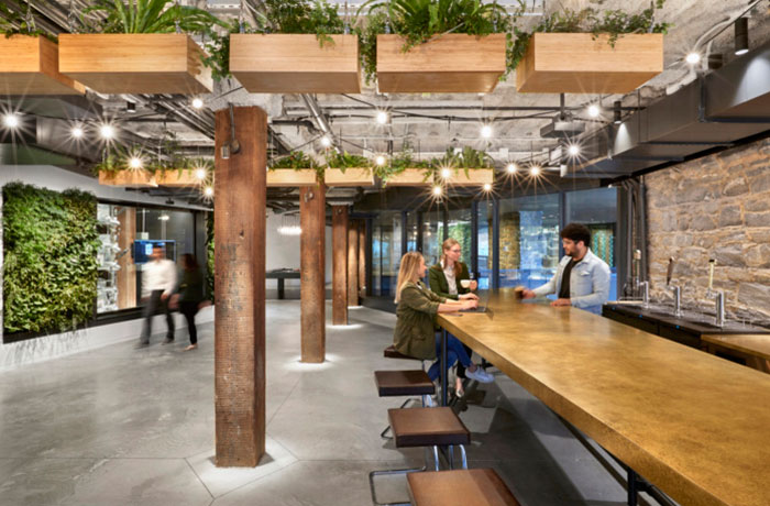 united technologies digital office's open meeting space with a plant wall, hanging planters and a long wooden table