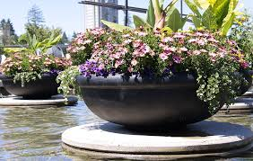plant containers water feature