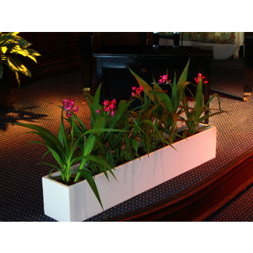 Wheeling Rectangle Fiberglass Planter Box