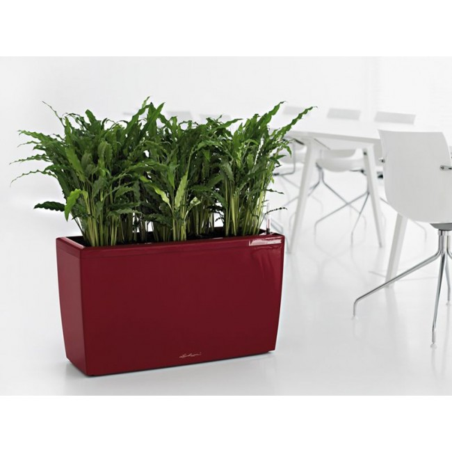 lechuza windowsill planters newpro containers lechuza cararo planter newpro containers 676