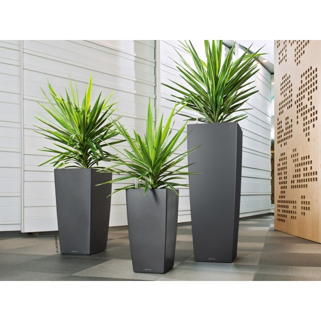 lechuza self watering cubico planter newpro containers. Black Bedroom Furniture Sets. Home Design Ideas