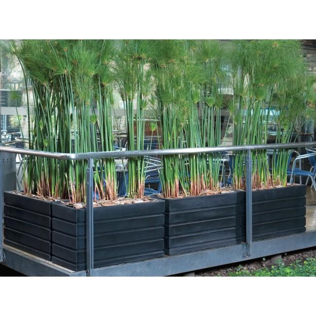 Ellis Rectangle Planter Box