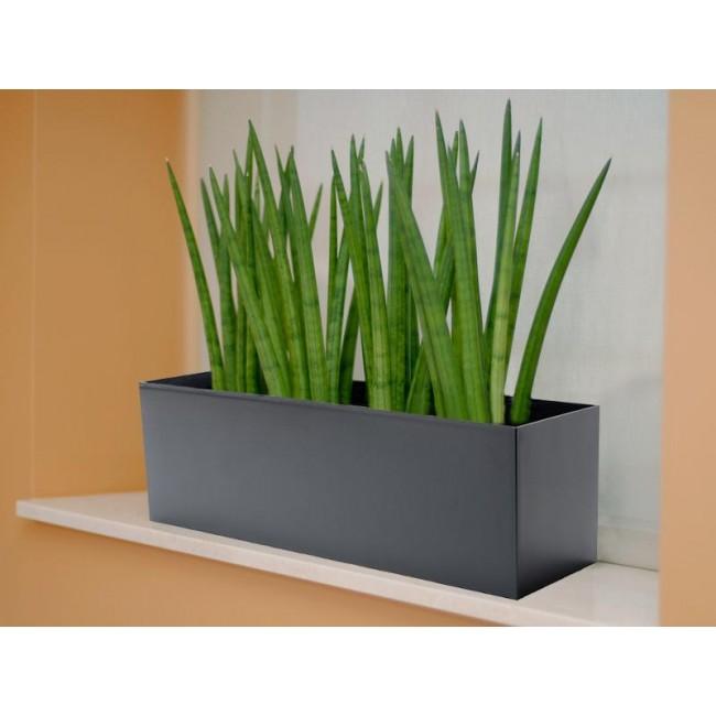Potluck color molded rectangle planter - Cubicle planters ...