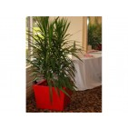 Bergen Square Tapered Fiberglass Planter