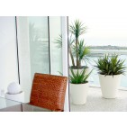 Pego Oval Fiberglass Planter