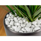 PolyPebbles Polished Plastic Stones