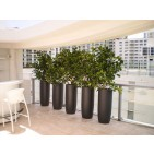 Saint Tropez Tall Round Fiberglass Planter