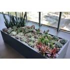 Selenge Rectangle Large Fiberglass Planter Box